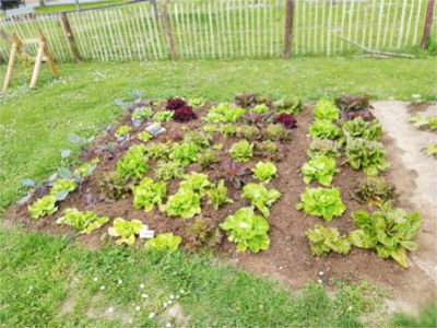 potagers